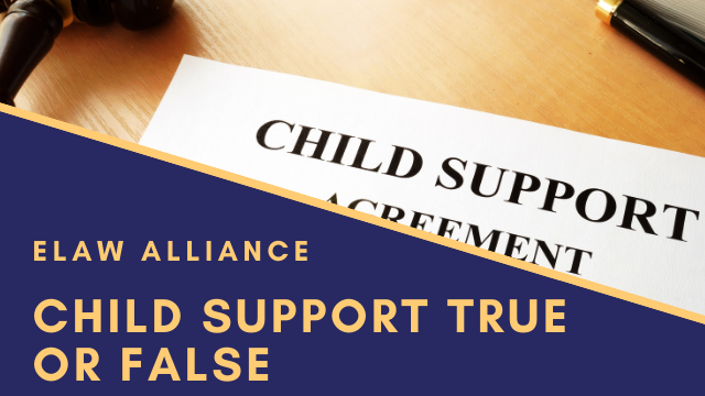 eLaw Alliance _ Youtube Thumb _ Child Support True or False